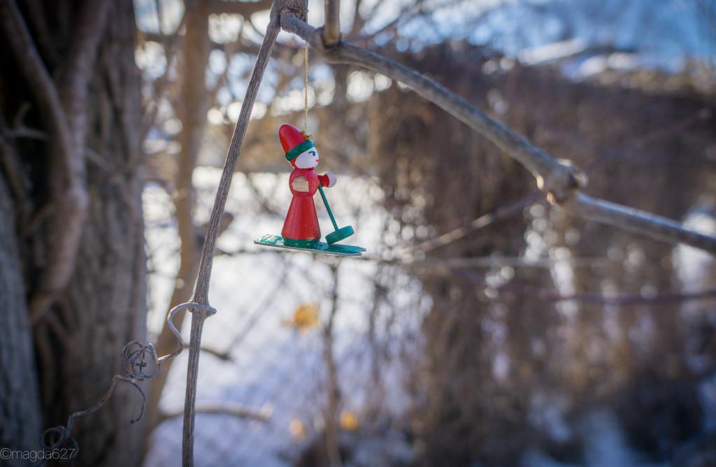 anteketborka.blogspot.com, froid-6