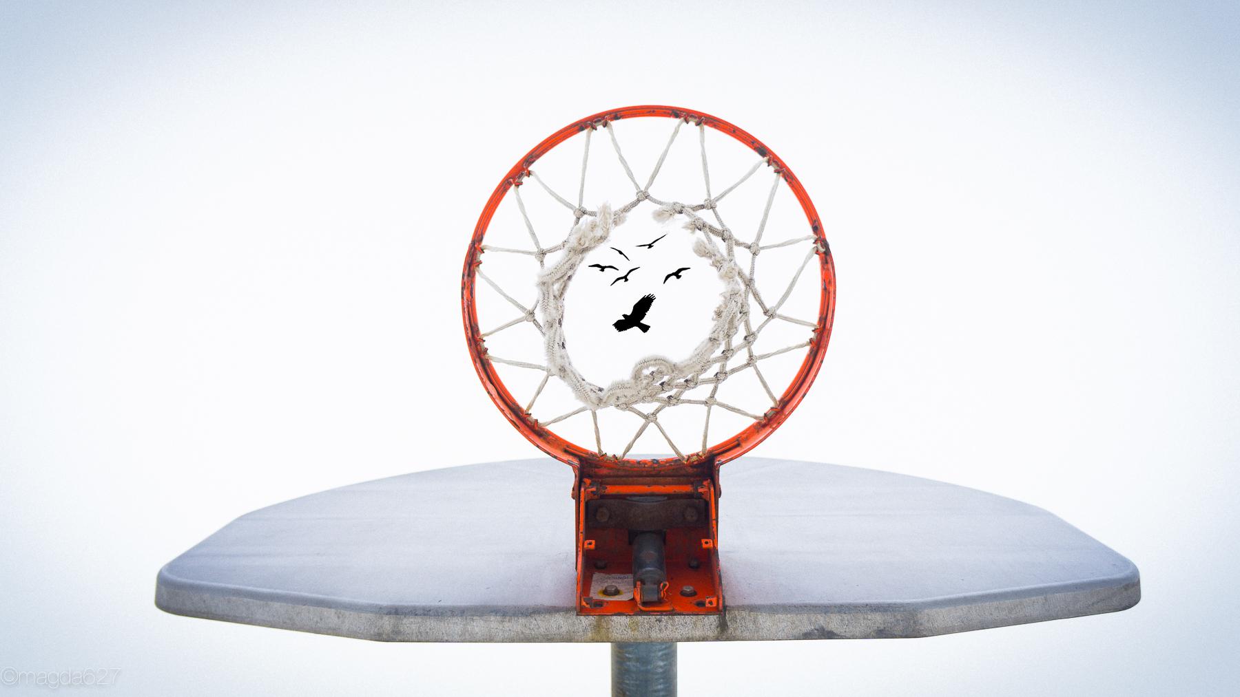 anteketborka.com, basketball-4