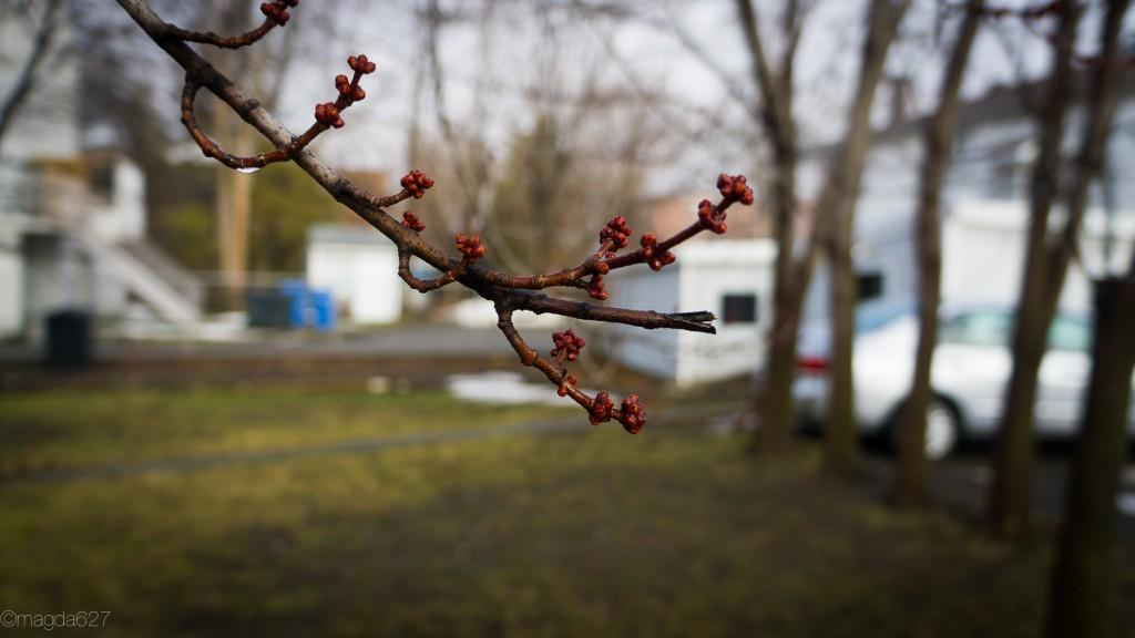 anteketborka.com, ciel_27_mars-11