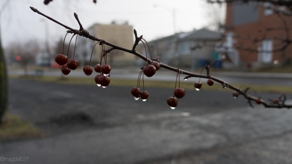 anteketborka.com, ciel_27_mars-12