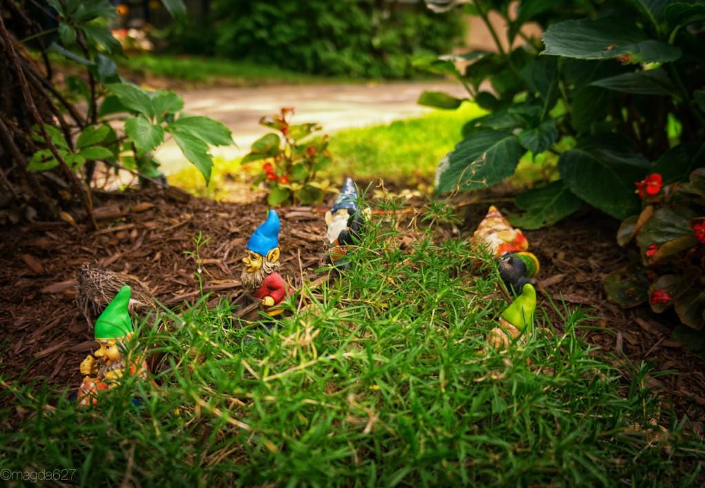 anteketborka.com, pcc_les_nains_de_jardin-6