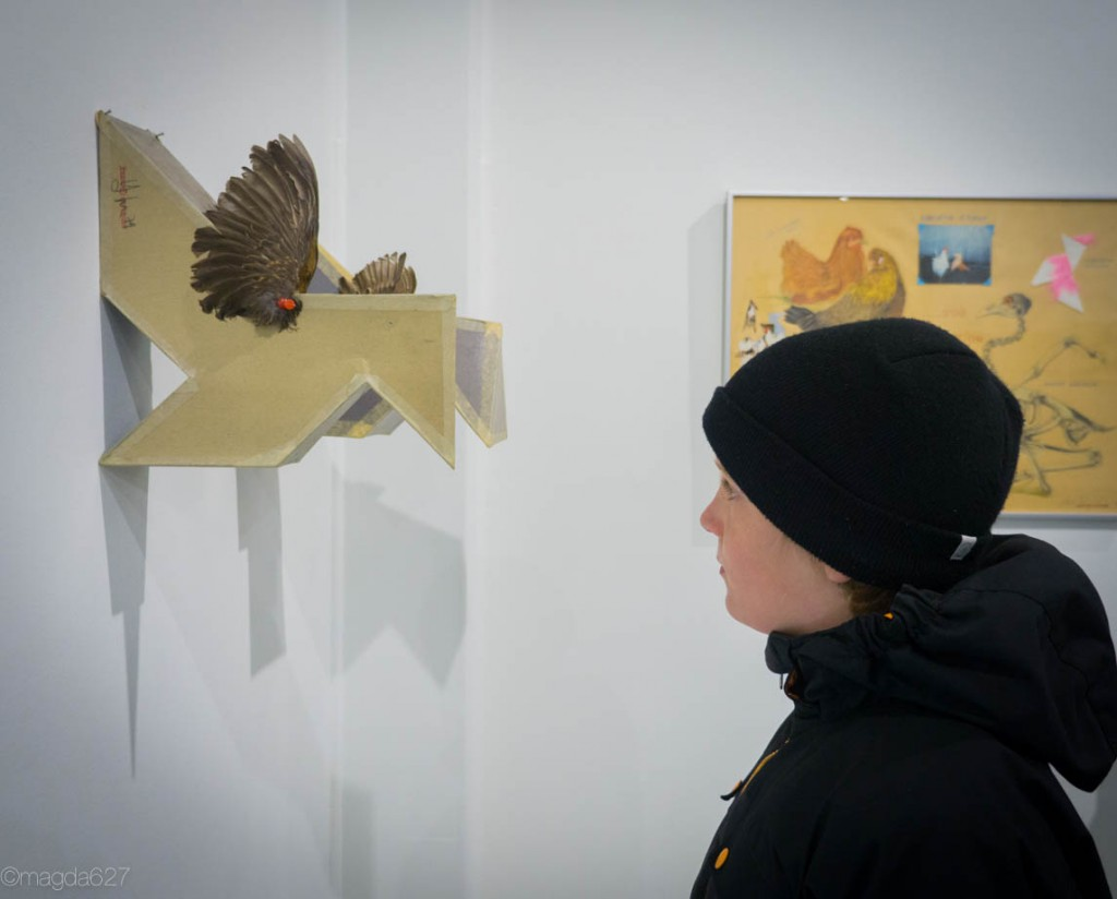 anteketborka.com, COZIC-2