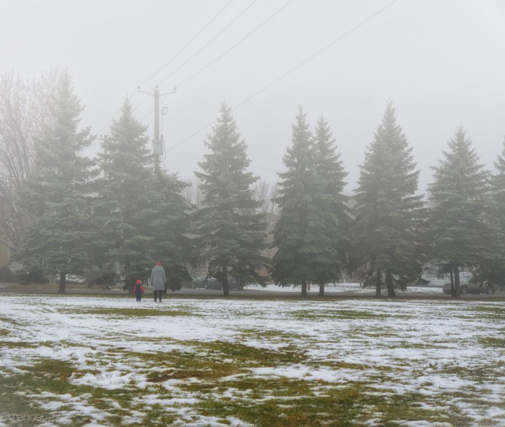 anteketborka.com, foggy_day-2