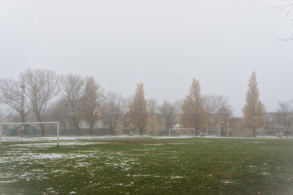 anteketborka.com, foggy_day-4