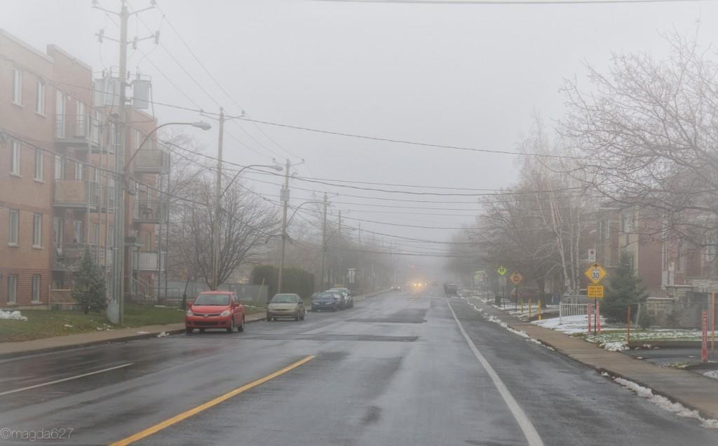 anteketborka.com, foggy_day-7