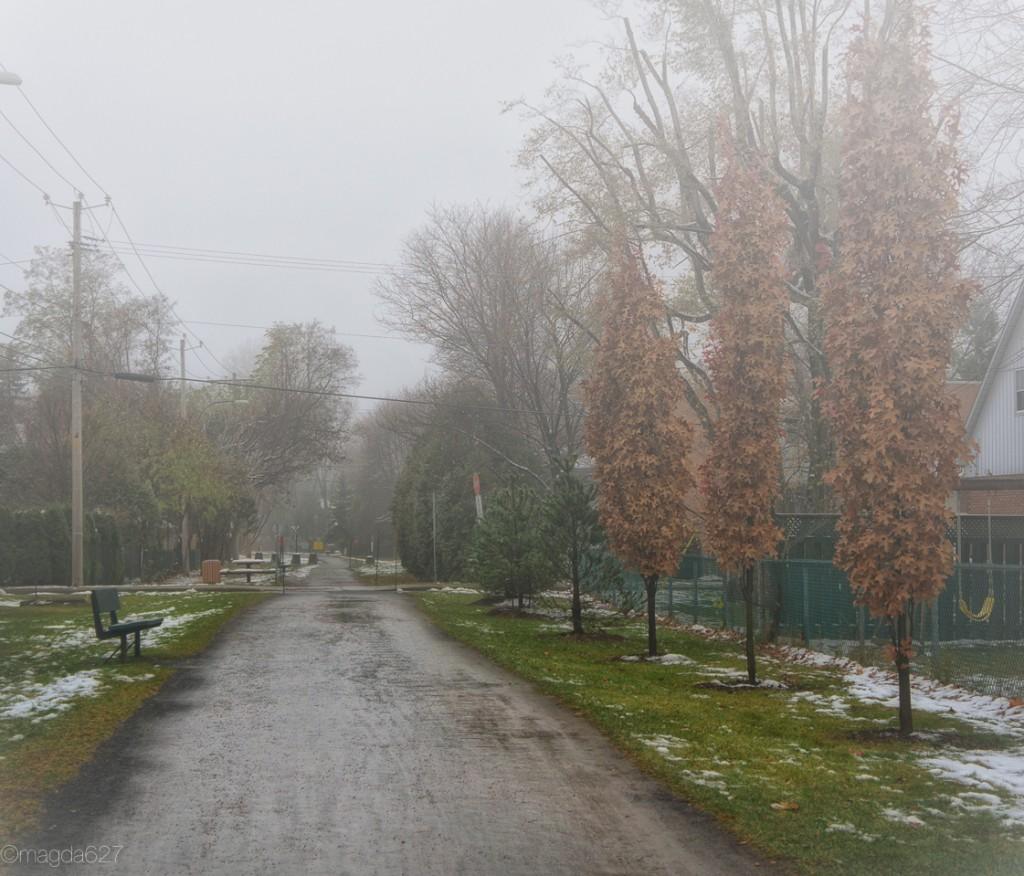 anteketborka.com, foggy_day-9