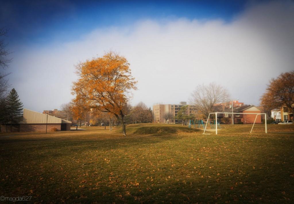 anteketborka.com, novembre-1-7