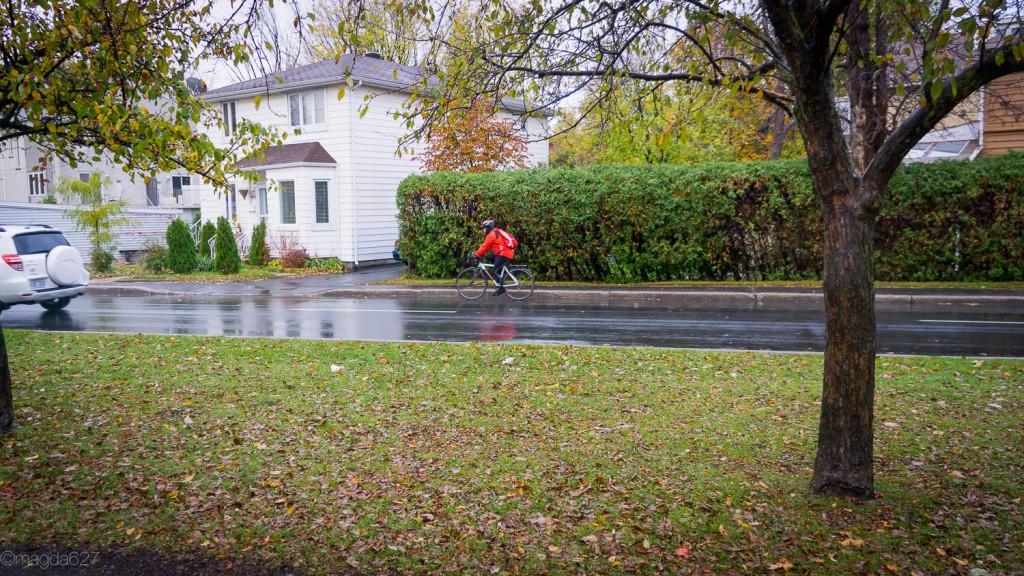 anteketborka.com, novembre_piste_cyclable-9