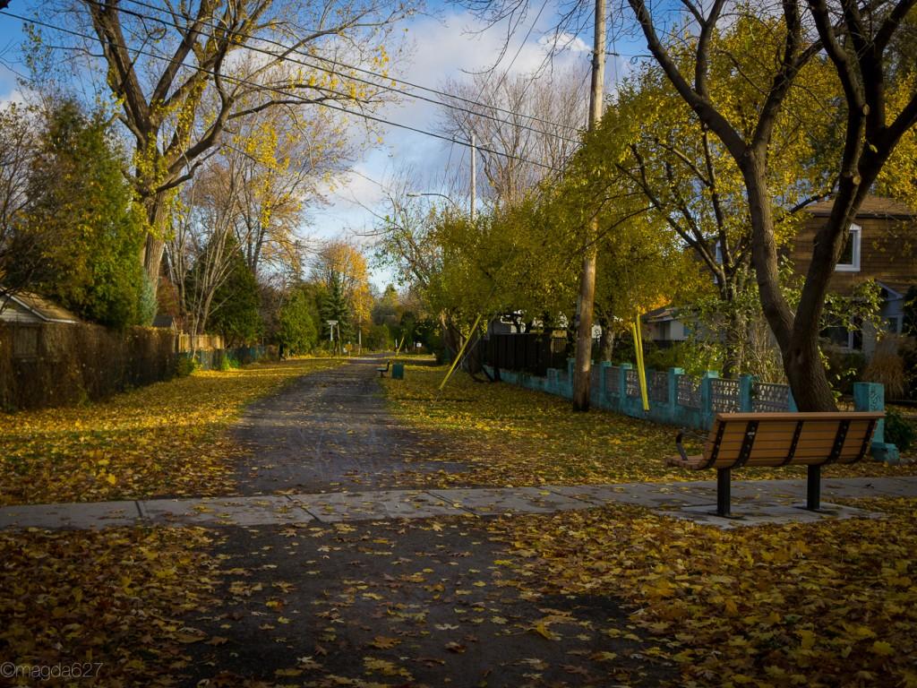 anteketborka.com, novembre_piste_cyclable2-8