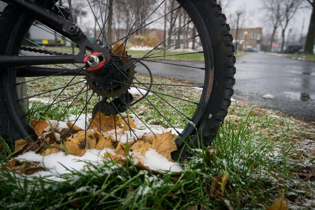 anteketborka.com, first_snow-10