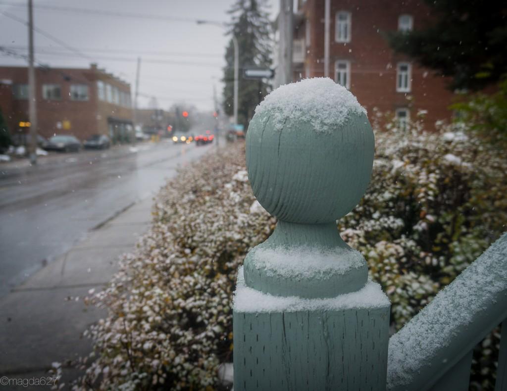 anteketborka.com, first_snow-19