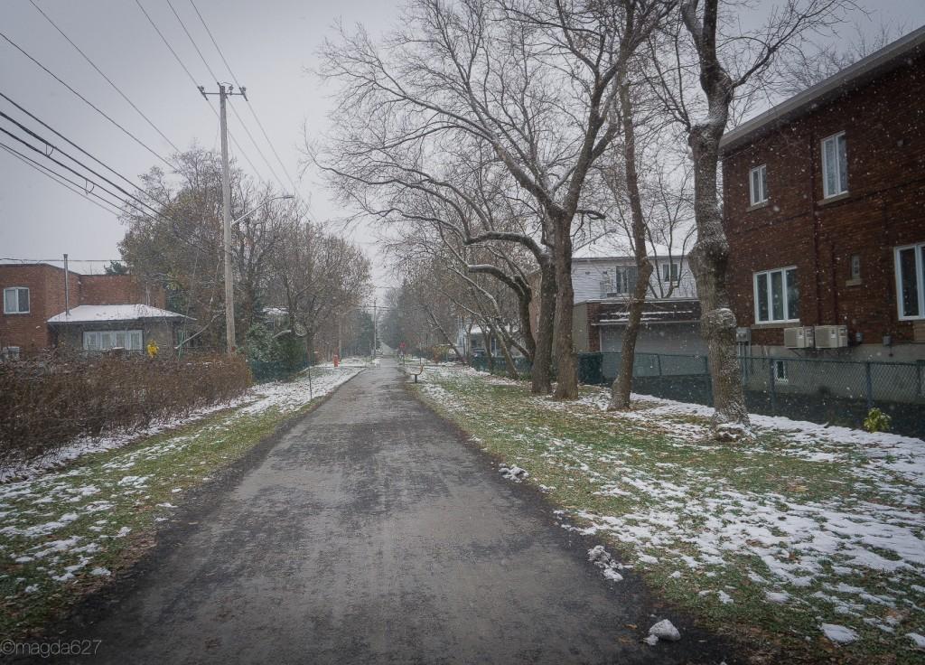 anteketborka.com, first_snow-8