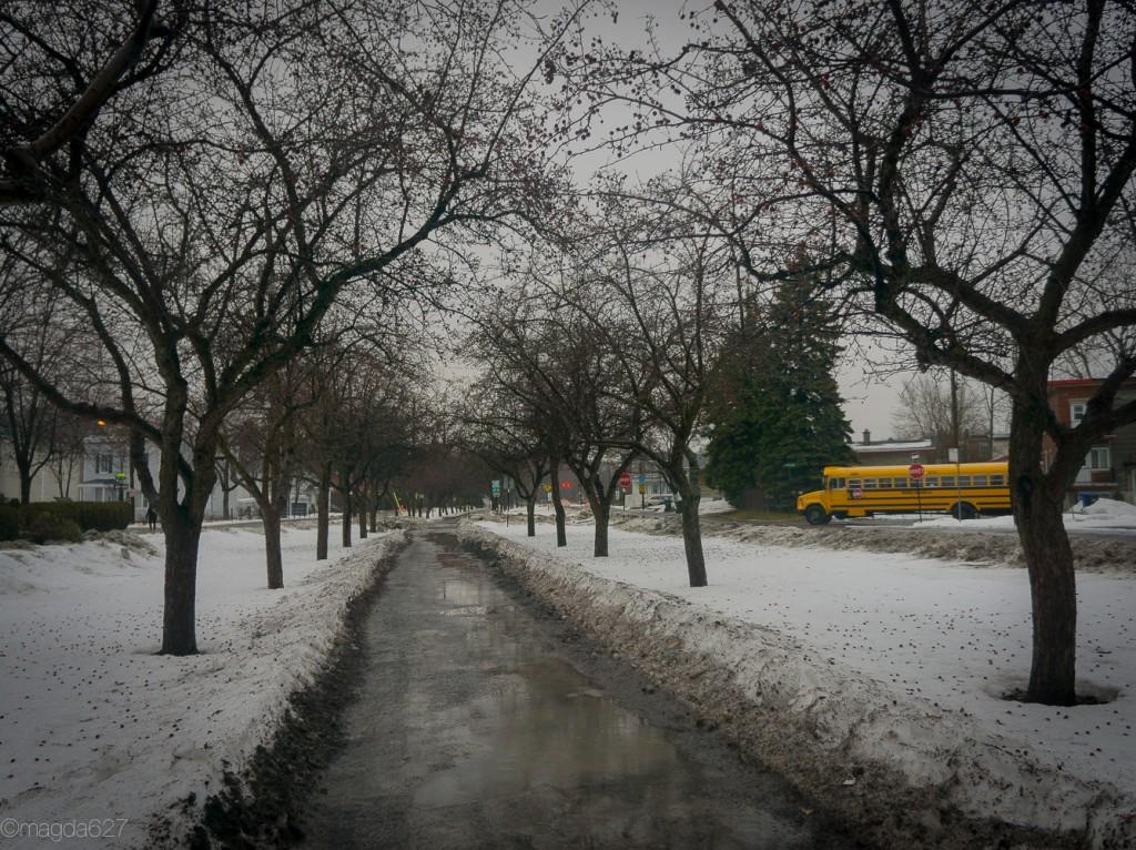 anteketborka.com, hiver-10-2