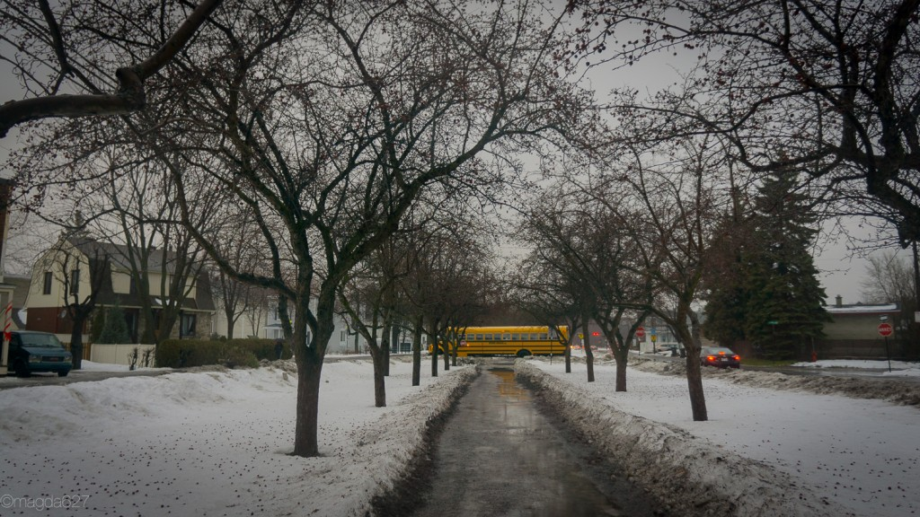 anteketborka.com, hiver-11-2