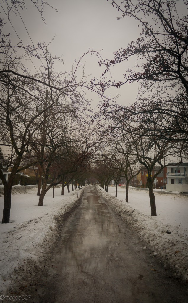 anteketborka.com, hiver-14-2