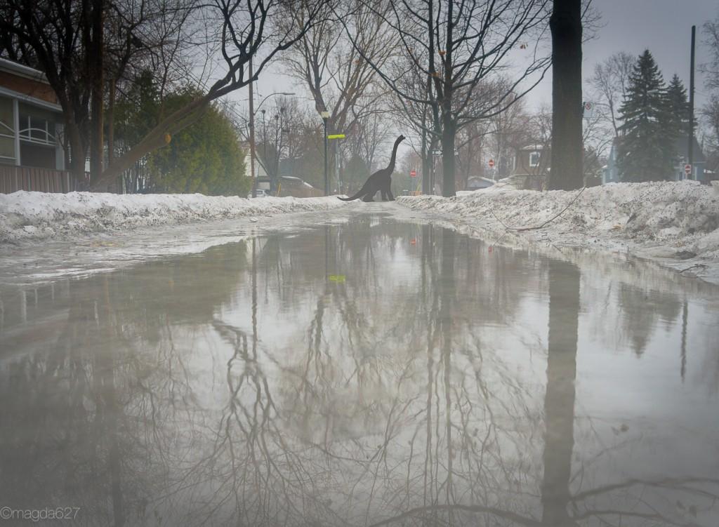 anteketborka.com, hiver-28