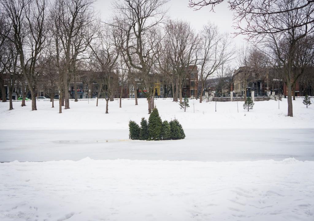 anteketborka.com, hiver 29_01_17-11