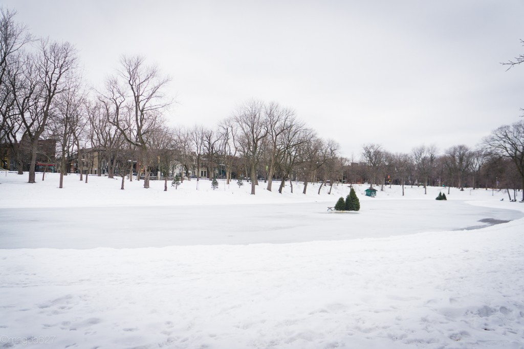 anteketborka.com, hiver 29_01_17-2