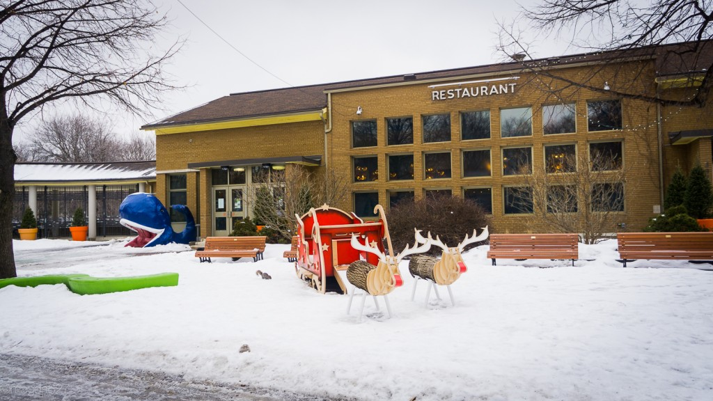 anteketborka.com, hiver 29_01_17-28