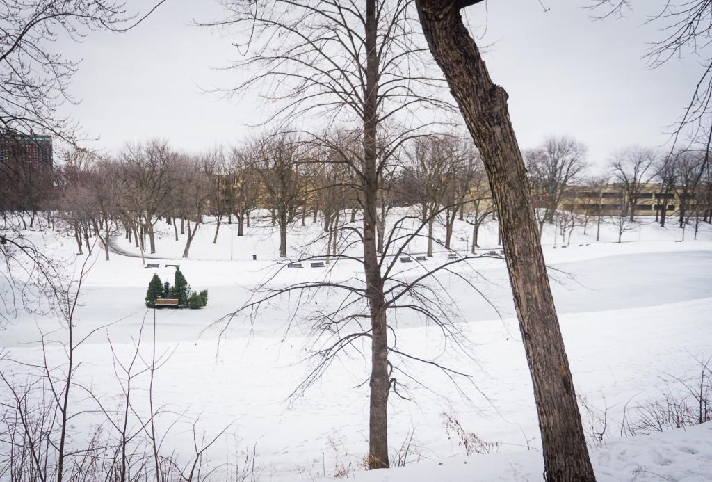 anteketborka.com, hiver 29_01_17-30