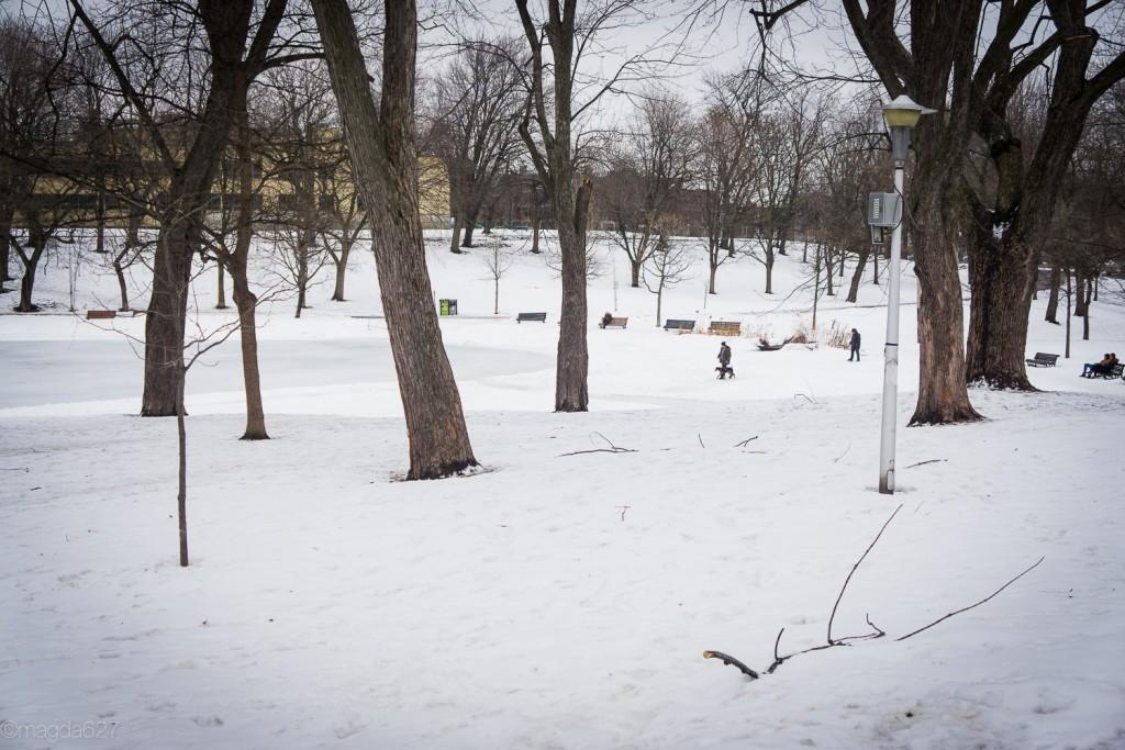 anteketborka.com, hiver 29_01_17-33