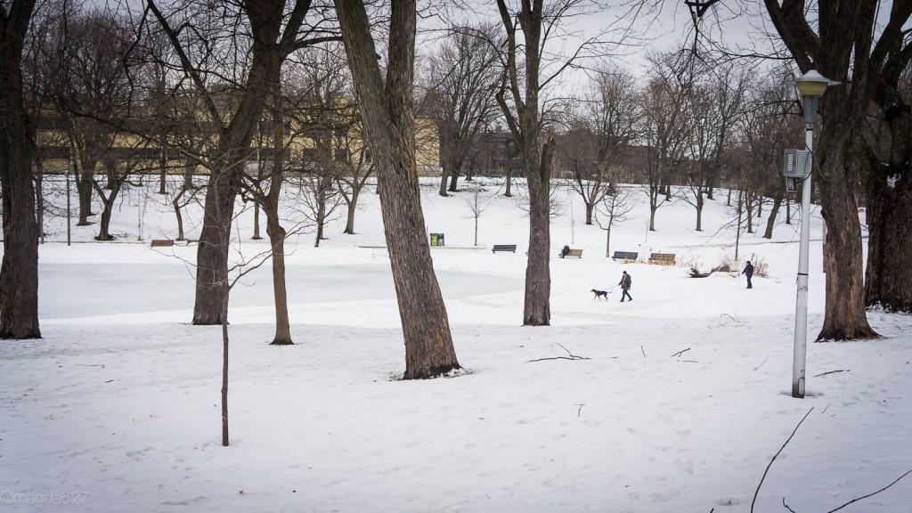 anteketborka.com, hiver 29_01_17-34