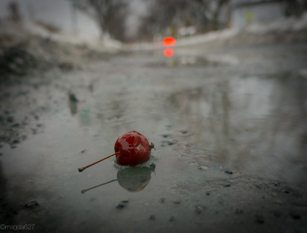 anteketborka.com, hiver-7-2