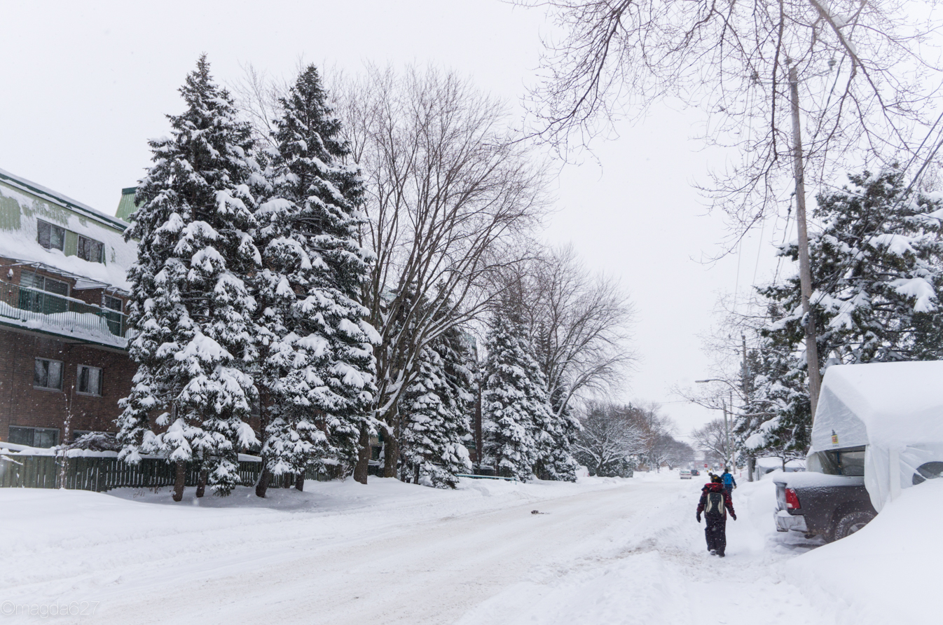 anteketborka.com, neige 02_17-1