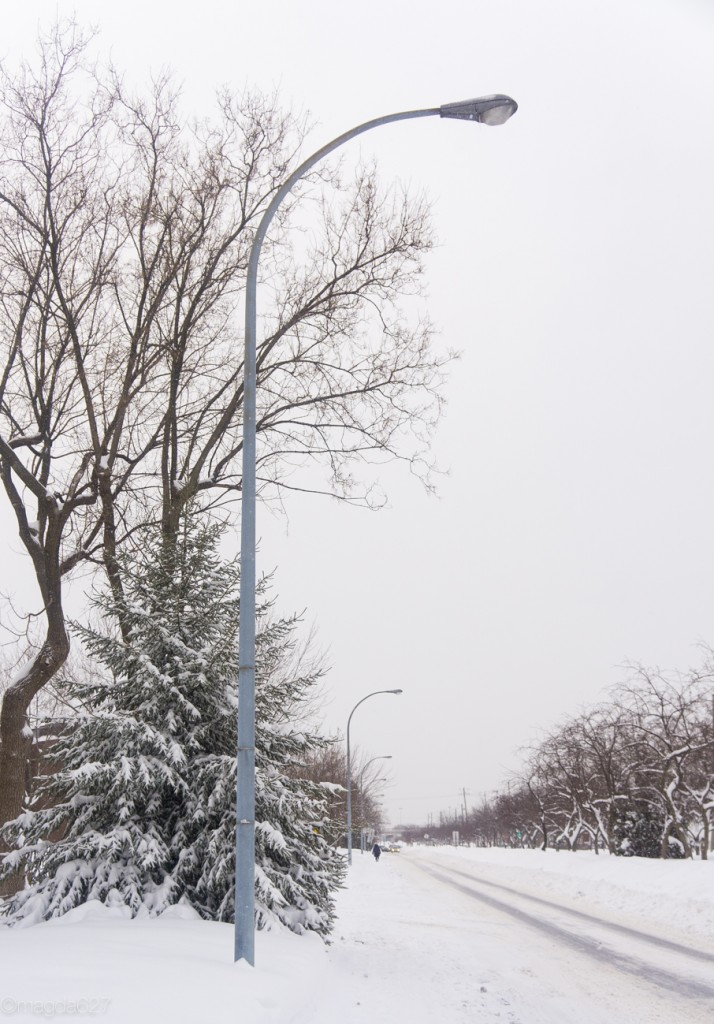 anteketborka.com, neige 02_17-11-2