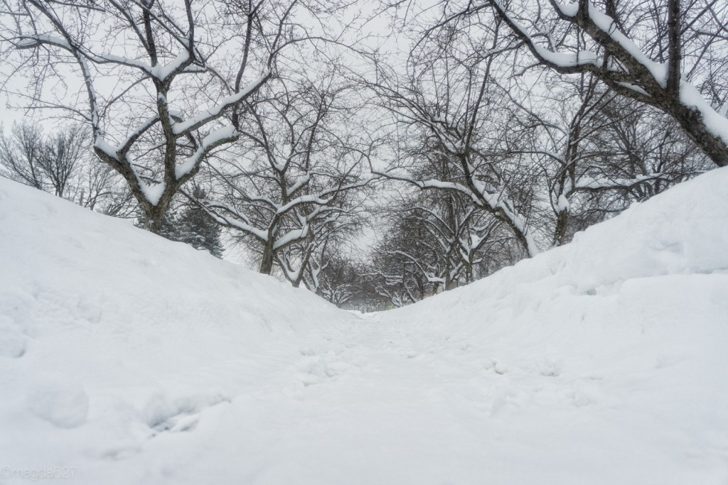 anteketborka.com, neige 02_17-3-2