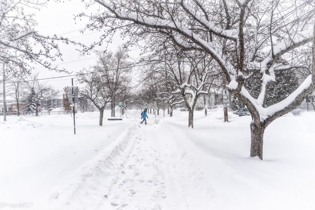 anteketborka.com, neige 02_17-5-2