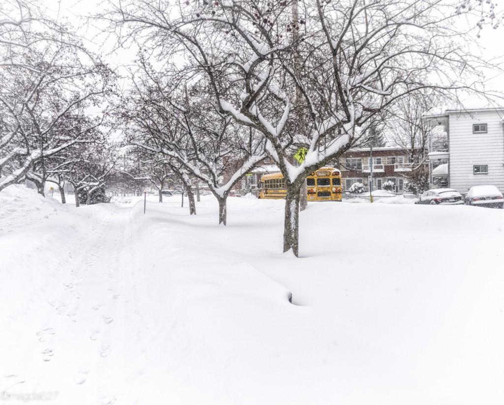 anteketborka.com, neige 02_17-6-2