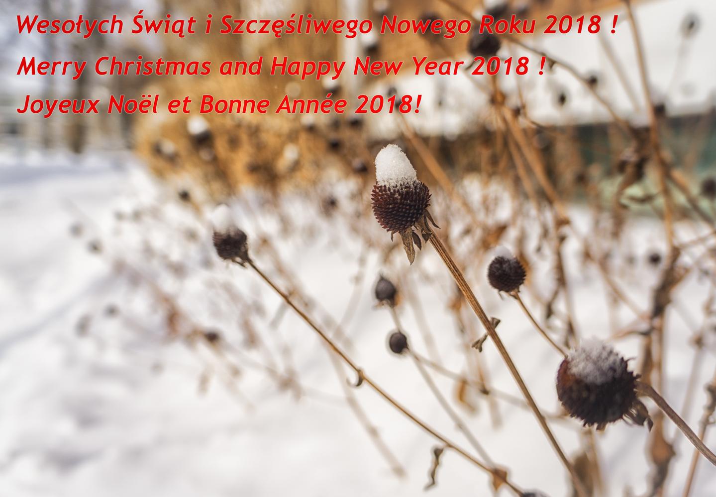 anteketborka.com, photodudimanche-5